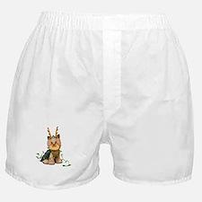 Christmas Yorkie Boxer Shorts