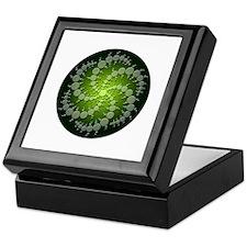 Green Rasa Keepsake Box