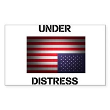 Under Distress Decal
