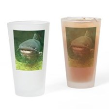 Curious Catfish Drinking Glass