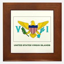 The United States Virgin Islands Flag Stuff Framed