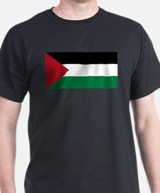Palestine - Natinal Flag - Current T-Shirt