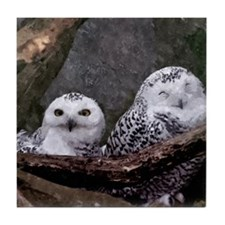 Two Owls Tile Coaster
