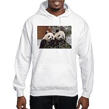 Pandas Eating Hooded Sweatshirt