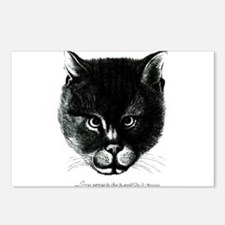Kitty Face Postcards (Package of 8)
