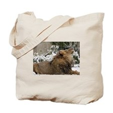Lion in Snow Tote Bag