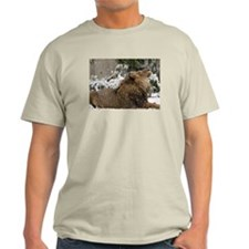 Lion in Snow Light T-Shirt