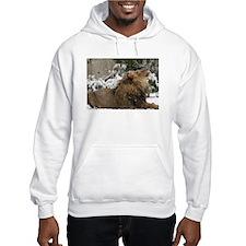 Lion in Snow Hooded Sweatshirt