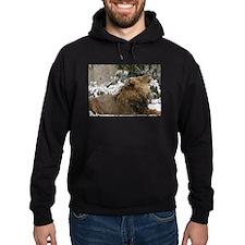 Lion in Snow Hoodie (dark)