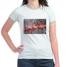Flamingo Group Jr. Ringer T-Shirt