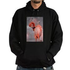 Flamingo Hoodie (dark)