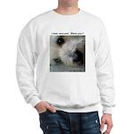 Rescue equals love Sweatshirt