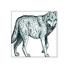 "Blue White Wolf Square Sticker 3"" x 3"""