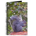 Western Gray Squirrel Journal