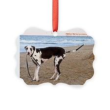 Great Dane 6 Ornament