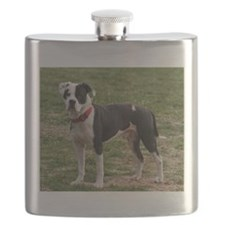 Bully Dogs 2 Flask