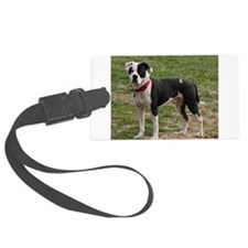 Bully Dogs 2 Luggage Tag