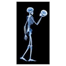 Skeleton holding a human skull Poster