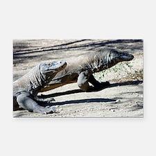 Komodo dragons - Car Magnet