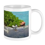 A Bird's Paradise Mug
