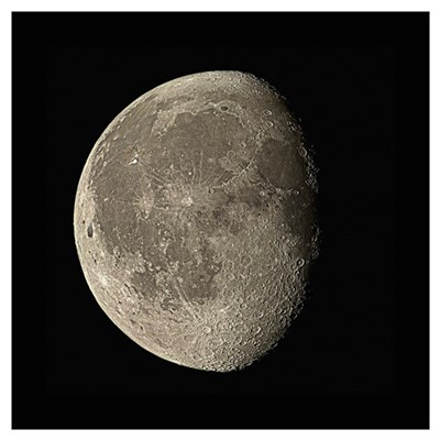 Waning gibbous Moon Canvas Art