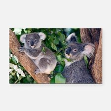 Mother koala and young - Car Magnet