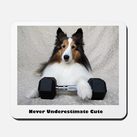 Never Underestimate Cute Mousepad