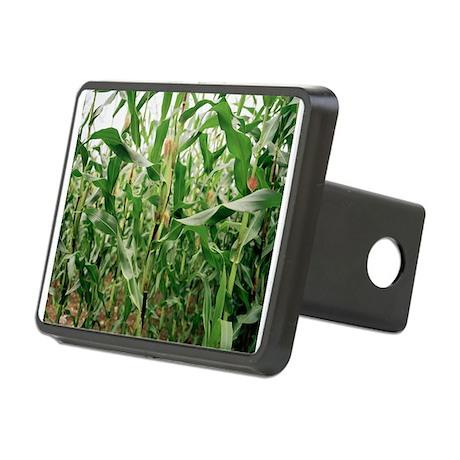Maize crop - Hitch Cover