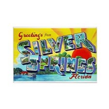 Silver Springs Florida Greetings Rectangle Magnet