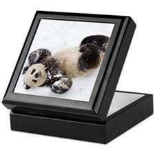 Panda Rolling In Snow Keepsake Box
