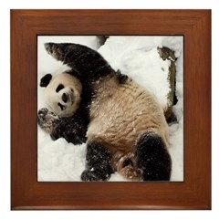 Panda Playing in Snow Framed Tile
