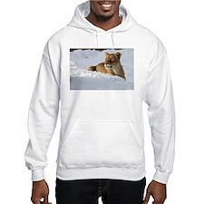 Female Lion in Snow Hooded Sweatshirt