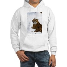 Tiger Laying In Snow Hooded Sweatshirt