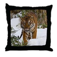 Tiger Walking in Snow Throw Pillow