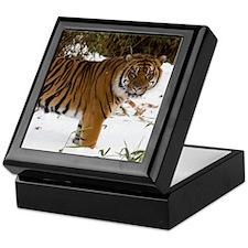 Tiger Standing in Snow Keepsake Box