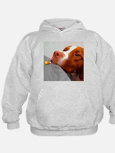 Candy corn dog Hoodie