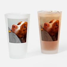Candy corn dog Drinking Glass