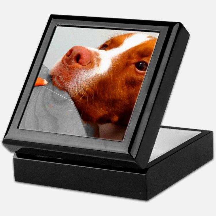 Candy corn dog Keepsake Box
