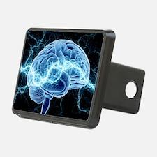 Human brain, conceptual artwork - Hitch Cover