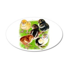Five Chicks 20x12 Oval Wall Decal