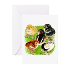 Five Chicks Greeting Cards (Pk of 20)