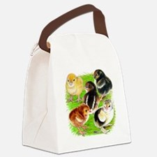 Five Chicks Canvas Lunch Bag