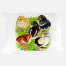 Five Chicks Pillow Case