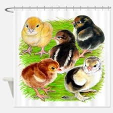 Five Chicks Shower Curtain