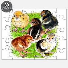 Five Chicks Puzzle