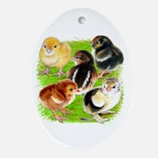 Five Chicks Ornament (Oval)