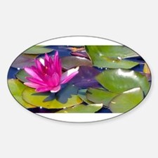 Waterlily Detail Decal