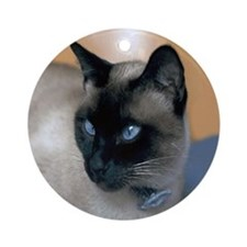 Siamese Cat Ornament Ornament (Round)