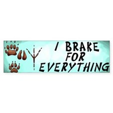 Brake for Everything Bumper Car Sticker