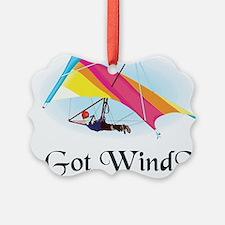 Got Wind? Ornament